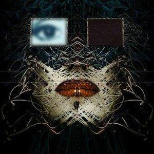 NewBorn Trance